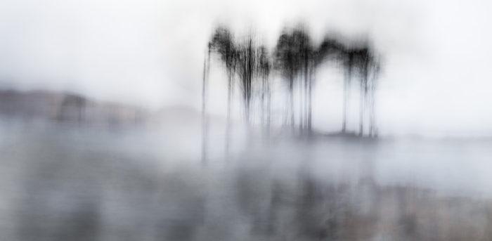 Lonesome Pines III